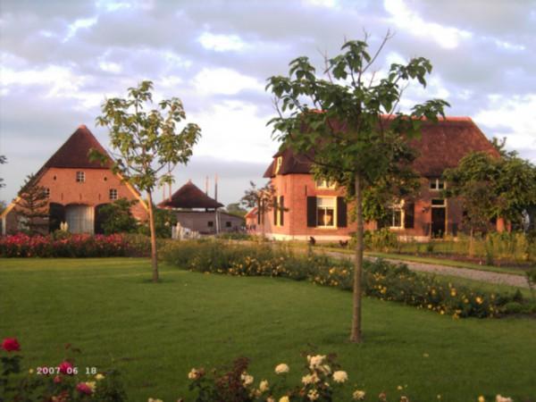 Hortensia boerderij